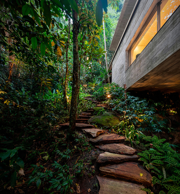 the-rainforest-house-18.jpg