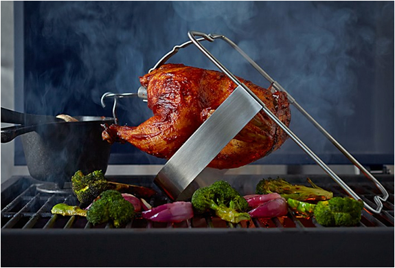 the-ultimate-chicken-roaster-4.jpg | Image