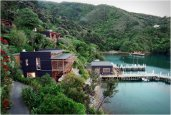thum_bay-of-many-coves-new-zealand.jpg