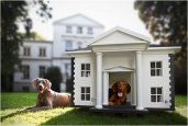 DOG HOMES | BY BEST FRIENDS HOME