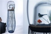 DUPLEX | FISHBOWL AND BIRDCAGE