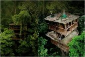 FINCA BELLAVISTA | TREE HOUSE COMMUNITY IN COSTA RICA