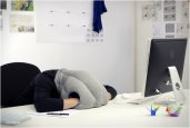 thum_ostrich-pillow.jpg