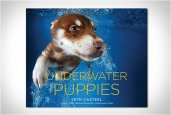 thum_seth-casteel-underwater-puppies.jpg