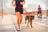 STUNT RUNNER | HANDS-FREE DOG LEASH