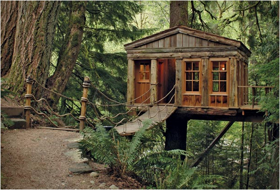 TREEHOUSE POINT | Image